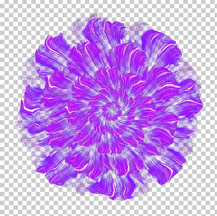 Purple Flower Thumbnail PNG, Clipart, Deductible, Designer.