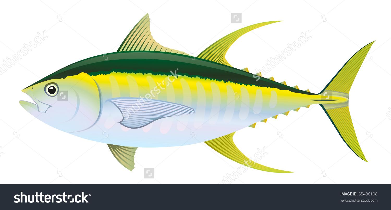 Yellow Fin Tuna Thunnus Albacares Saltwater Stock Vector 55486108.