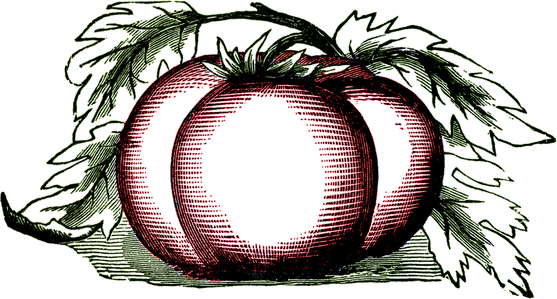 Public Domain Graphics.