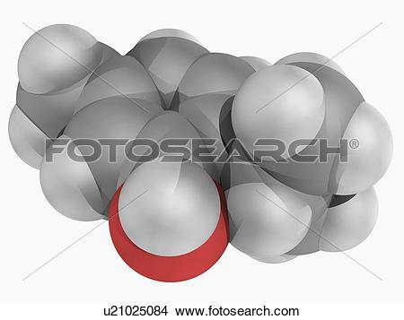Drawings of Thymol molecule u21025084.