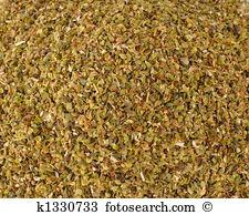 Thymus vulgaris Images and Stock Photos. 652 thymus vulgaris.