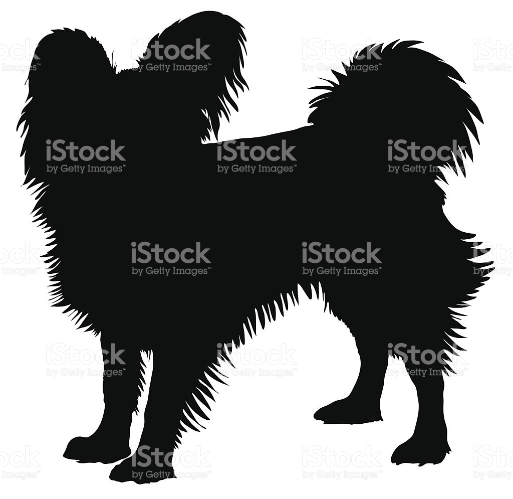 Papillon stock vector art 96455726.