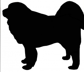 Tibetan Mastiff Dog Clip Art For Custom Pet Memorial Gifts.