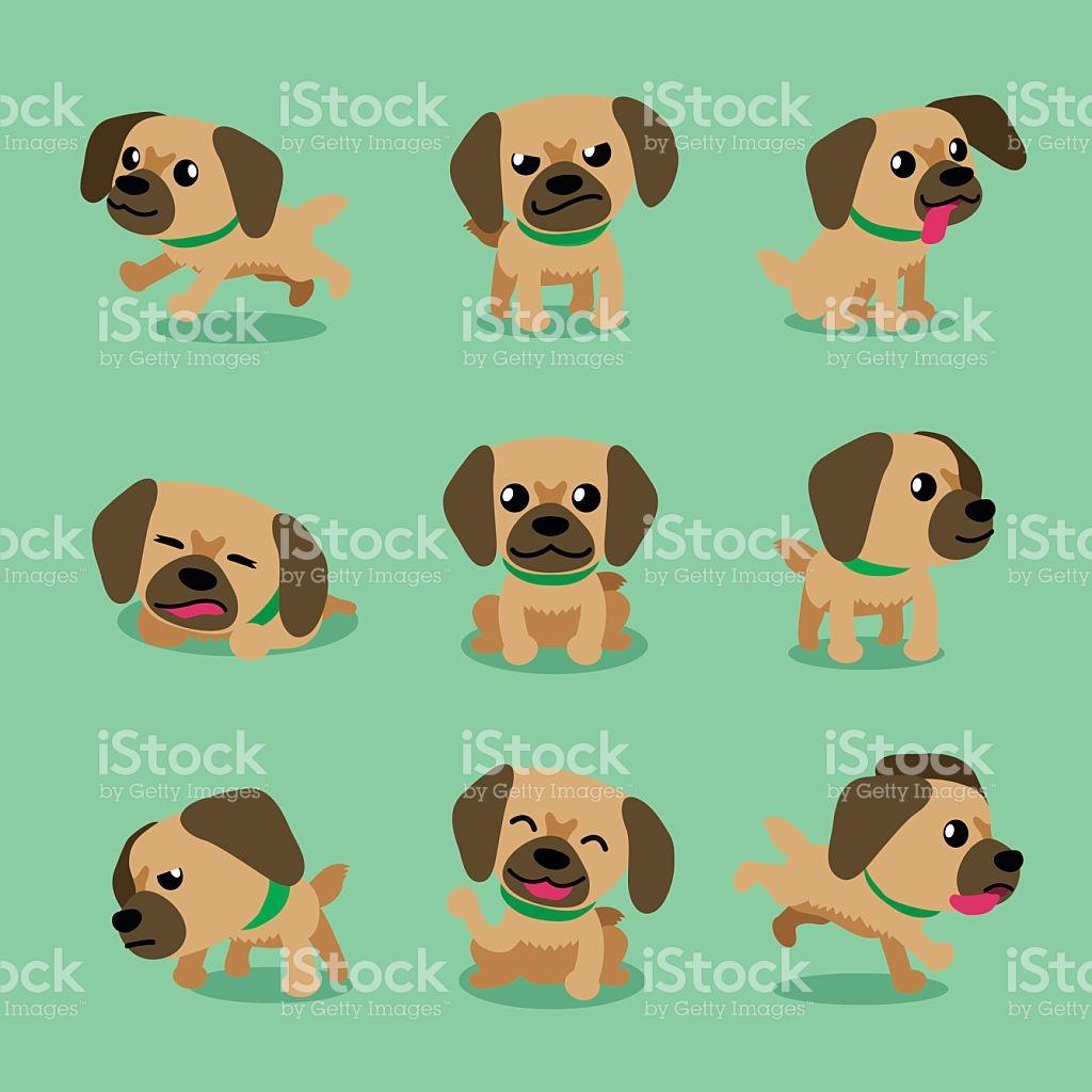 Cartoon Character Tibetan Spaniel Dog Poses stock vector art.