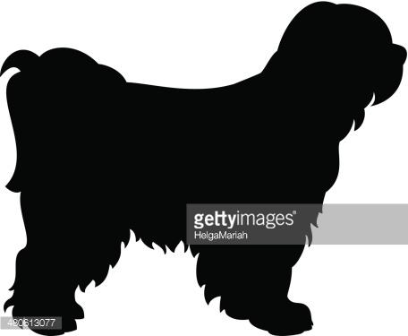 Tibetan terrier clipart.