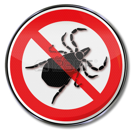 Prohibition Sign Caution Ticks And Tick Bites Royalty Free.