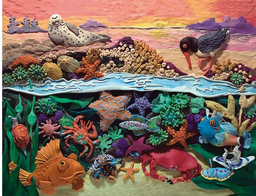 Tide pools clipart Clipground