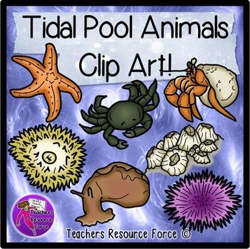 Tide pool clip art.