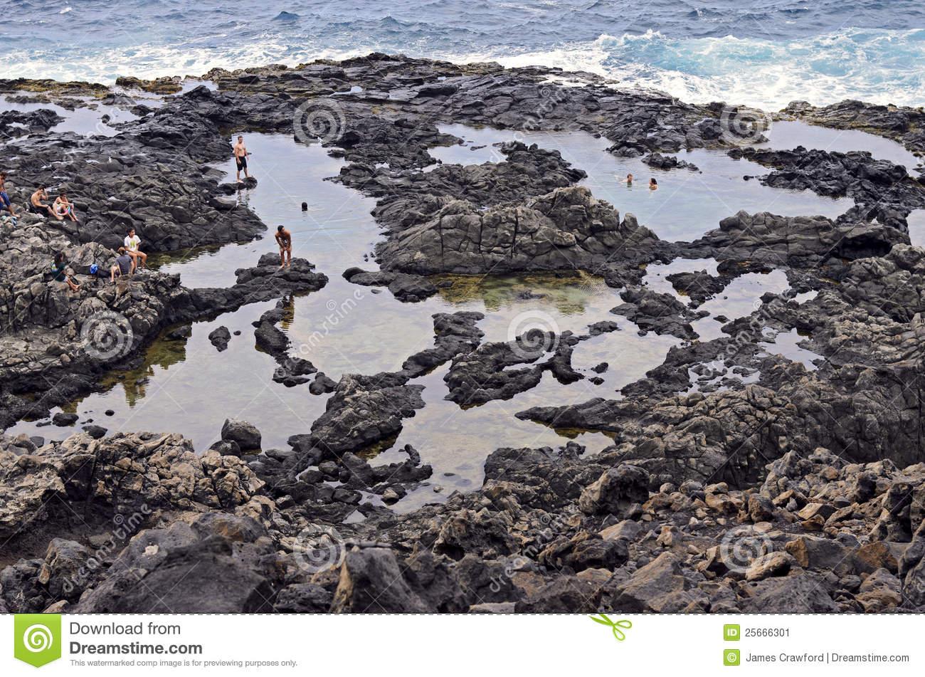 Tide Pool Exploration Near Bird Rock, Laguna Beach, CA. Editorial.