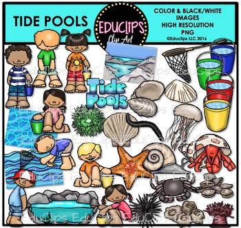 Tide Pools Clip Art Bundle {Educlips Clipart}.