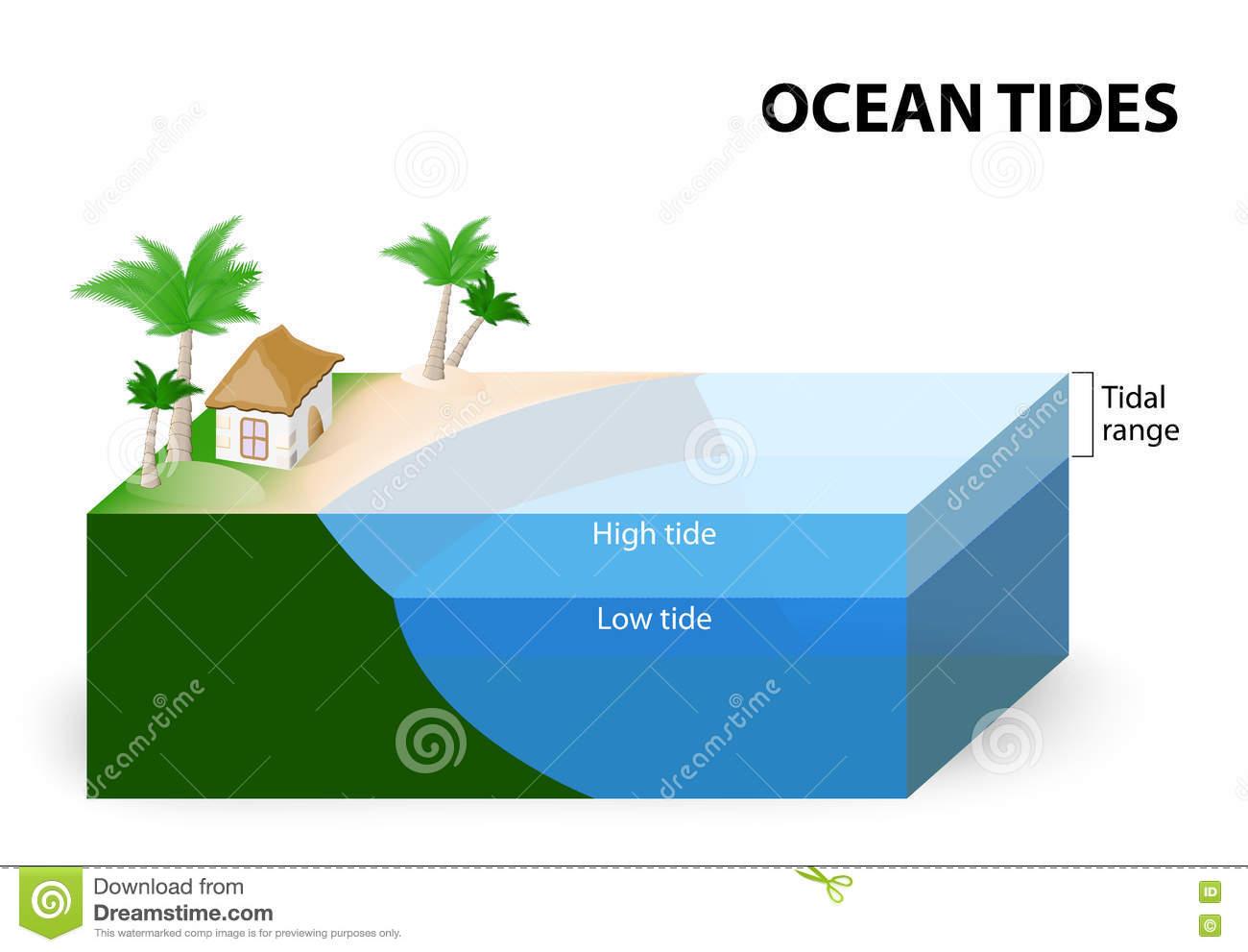 Ocean Tides Stock Vector.