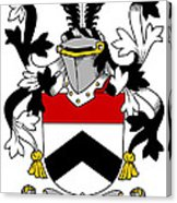 Tierney Coat Of Arms Irish Art Print.