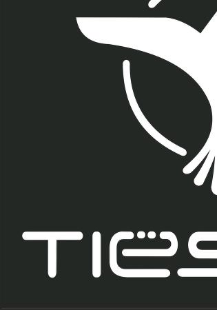 Tiesto Logo™ logo vector.