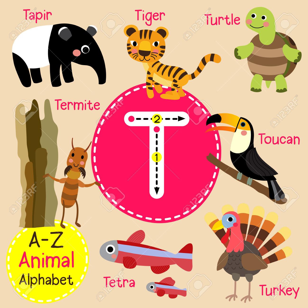 T Letter Tracing. Turtle. Toucan. Tiger. Termite. Tapir. Tetra.