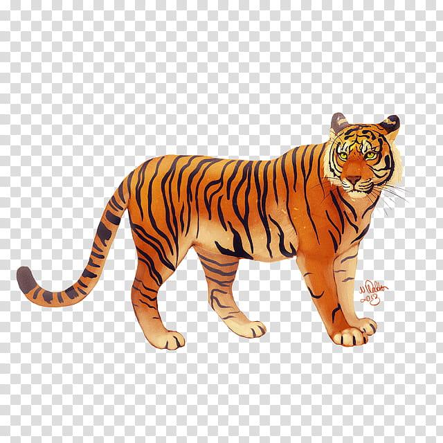 Cats, Lion, Bengal Tiger, Bali Tiger, Javan Tiger, Tiger.