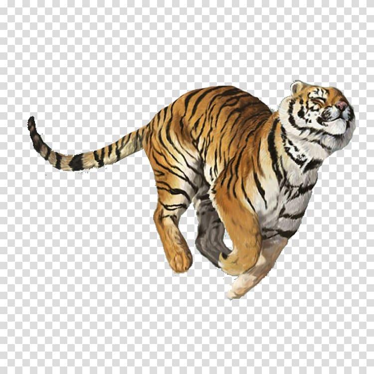 Tiger Balm Nuchal Rigidity, Tiger Creative transparent.
