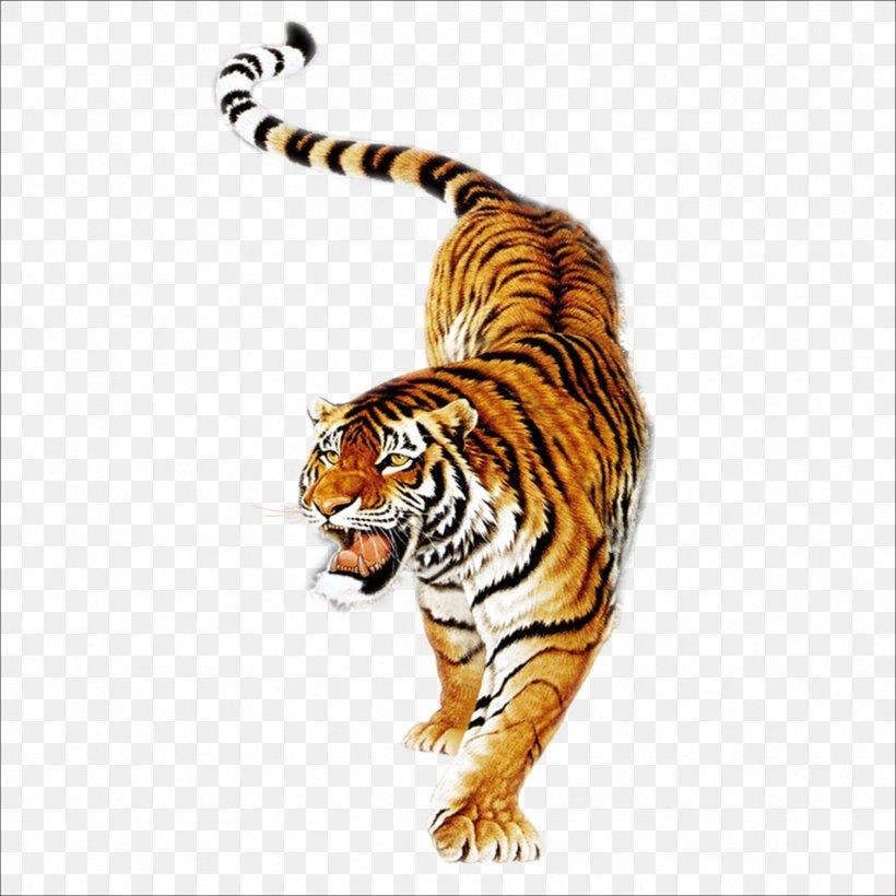 South China Tiger Tiger Balm Siberian Tiger Painting Tiger.