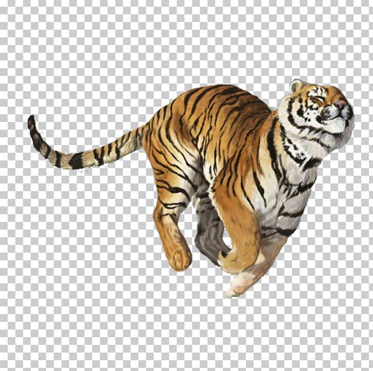 Tiger Balm Nuchal Rigidity PNG, Clipart, Adhesive Capsulitis.