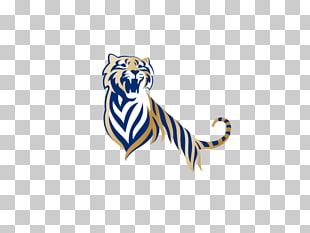 32 Tiger beer PNG cliparts for free download.