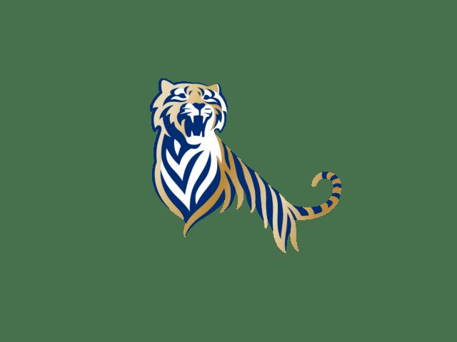 Tiger Beer Logo transparent PNG.