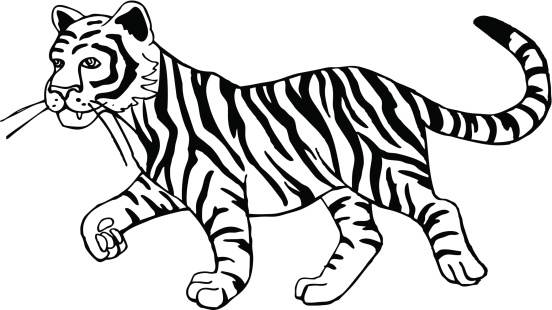 65+ Black And White Tiger Clipart.
