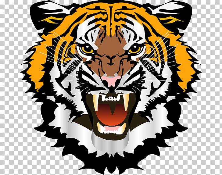 Tiger Face , Tiger Face File, tiger face illustration PNG.