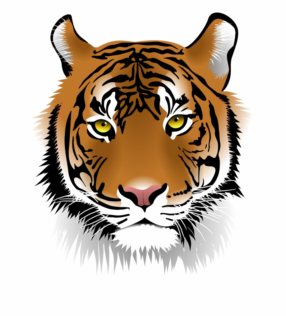 White Tiger Clipart Cool Tiger Tiger Face Png.