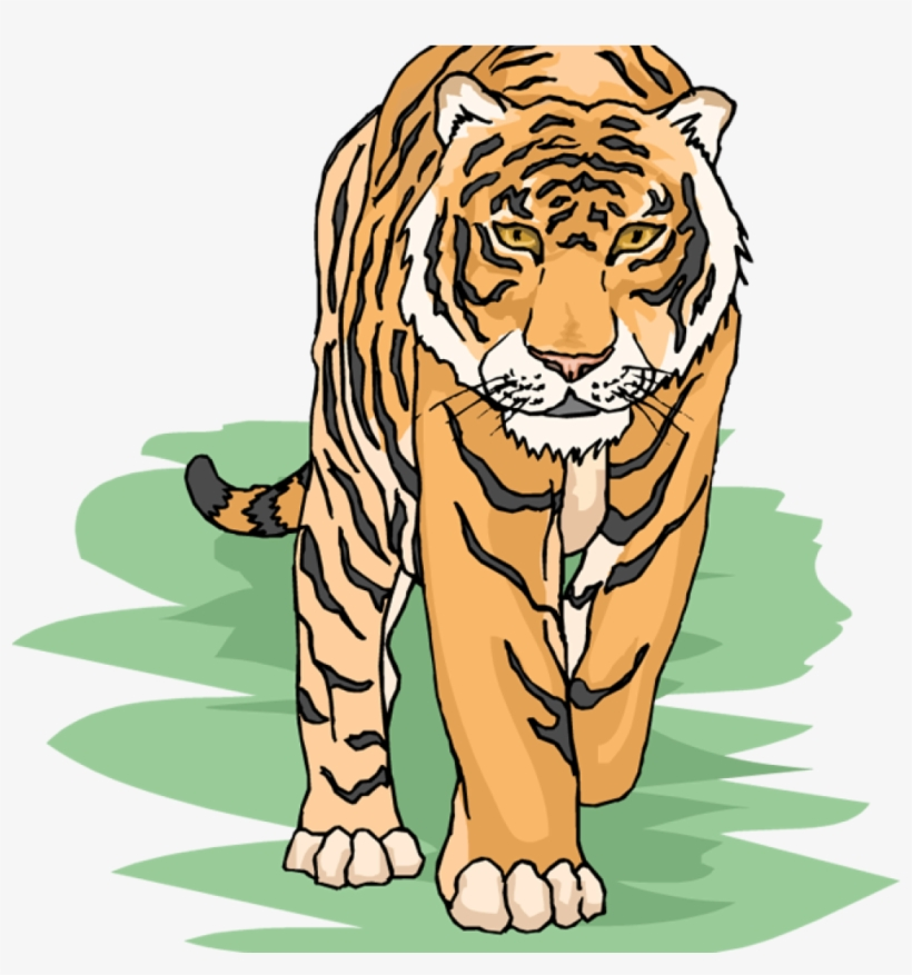 Free Tiger Clipart Snowflake Clipart Hatenylo.