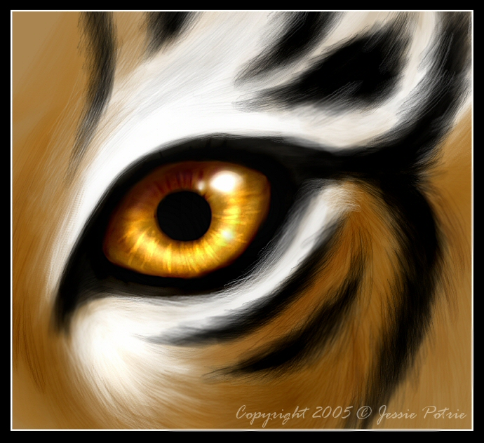 Image of Tiger Eyes Clipart #13162, Tiger Eyes Black And White.
