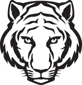 Image Of Tiger Eyes Clipart Tiger Eyes Clipart.