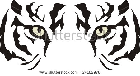 Tiger Eyes Stock Images, Royalty.