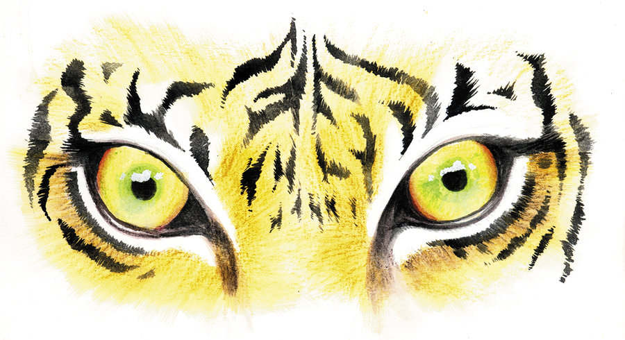 Free Tiger Eyes Cliparts, Download Free Clip Art, Free Clip.