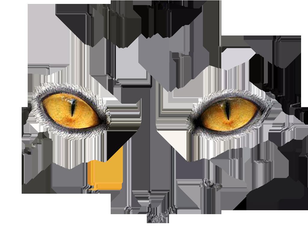 Animaimal Eye Png & Free Animaimal Eye.png Transparent.