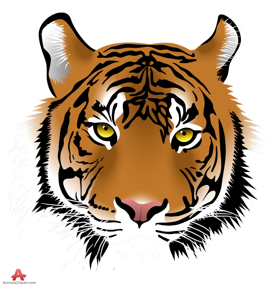 Tiger face clipart 5 » Clipart Station.