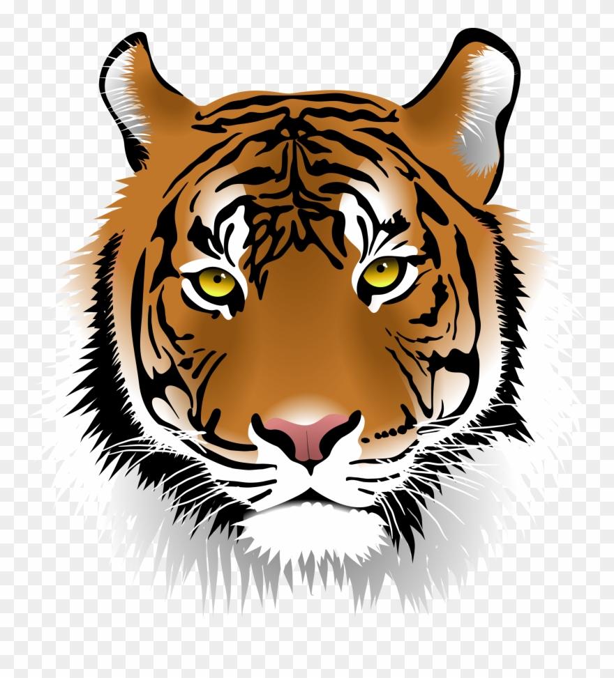 Free Elegant Tiger Face Clip Art.