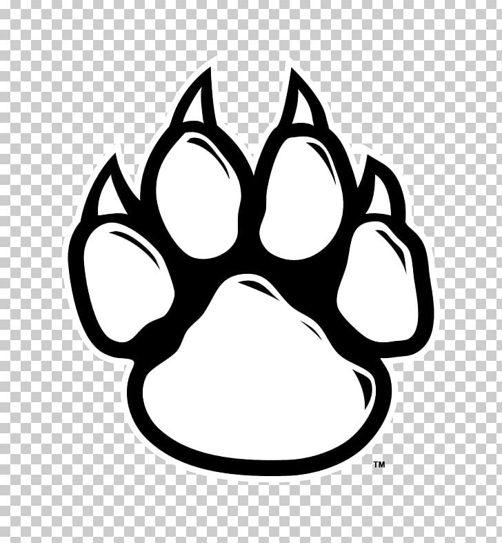 Wildcat Tiger Paw PNG, Clipart, Bear, Black, Black And White.