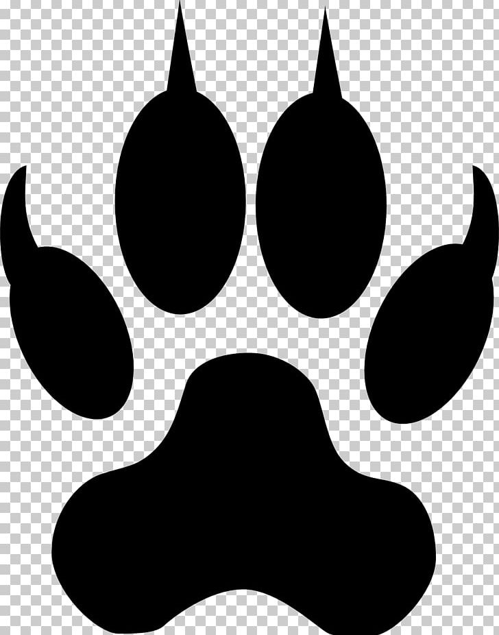 Lion Tiger Camel Footprint PNG, Clipart, Animal, Animals.