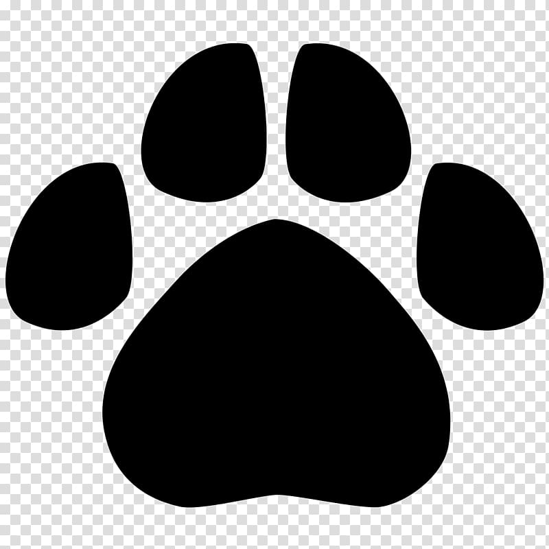 Tiger Cougar Paw Bobcat , footprints transparent background.