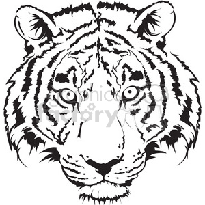 tiger head black and white illustration clipart. Royalty.