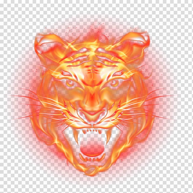 Tiger Fire Flame, tiger transparent background PNG clipart.