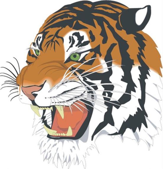 Tiger head vector Free vector in Adobe Illustrator ai ( .ai.