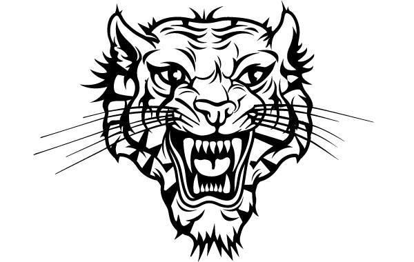 Tiger head vector Vector.