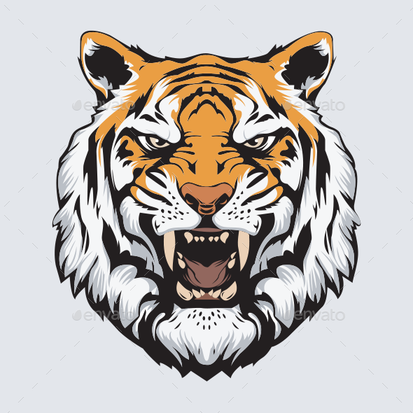 Tiger Head Vector.