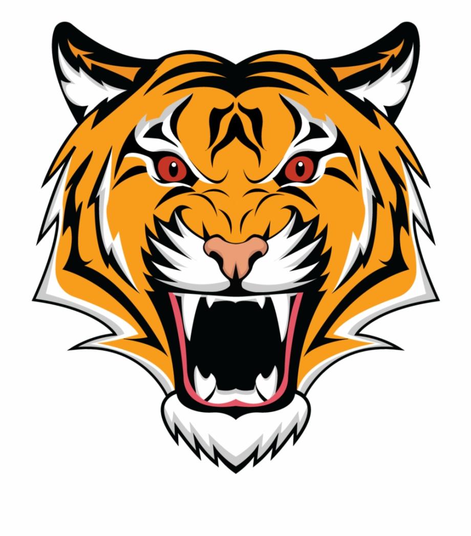 Tiger Png Head.