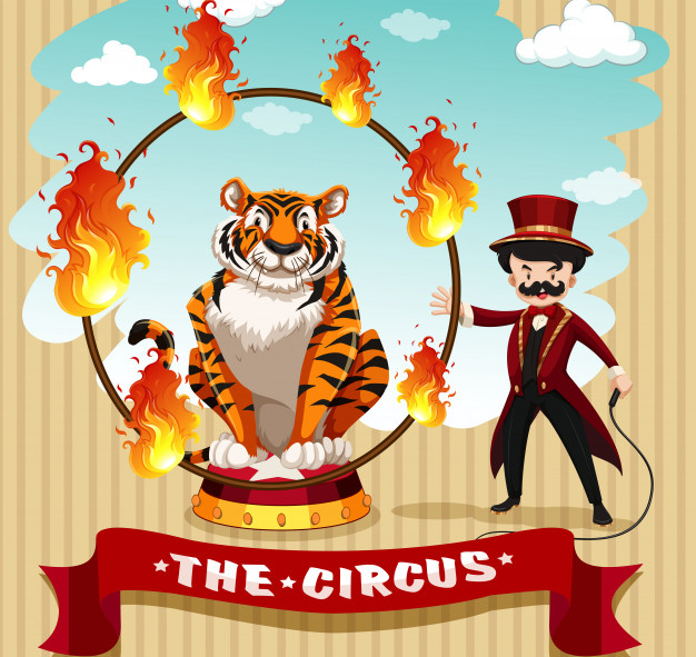 Tiger in fire hoop and ring master.