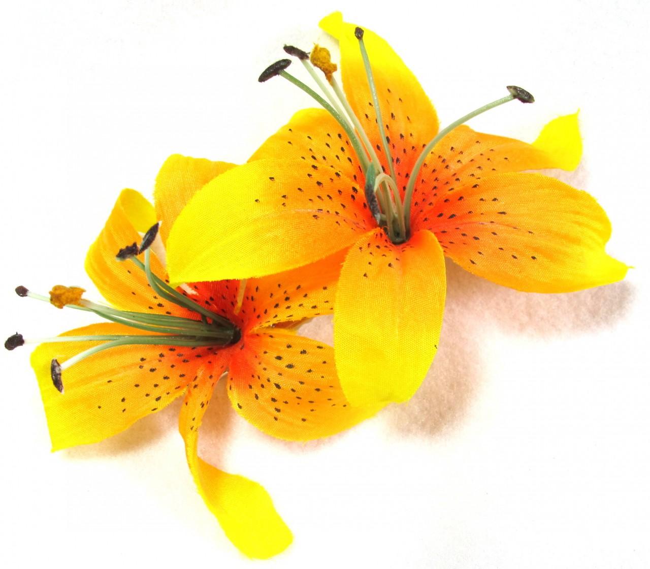 Orange Tiger Lilies Clip Art.