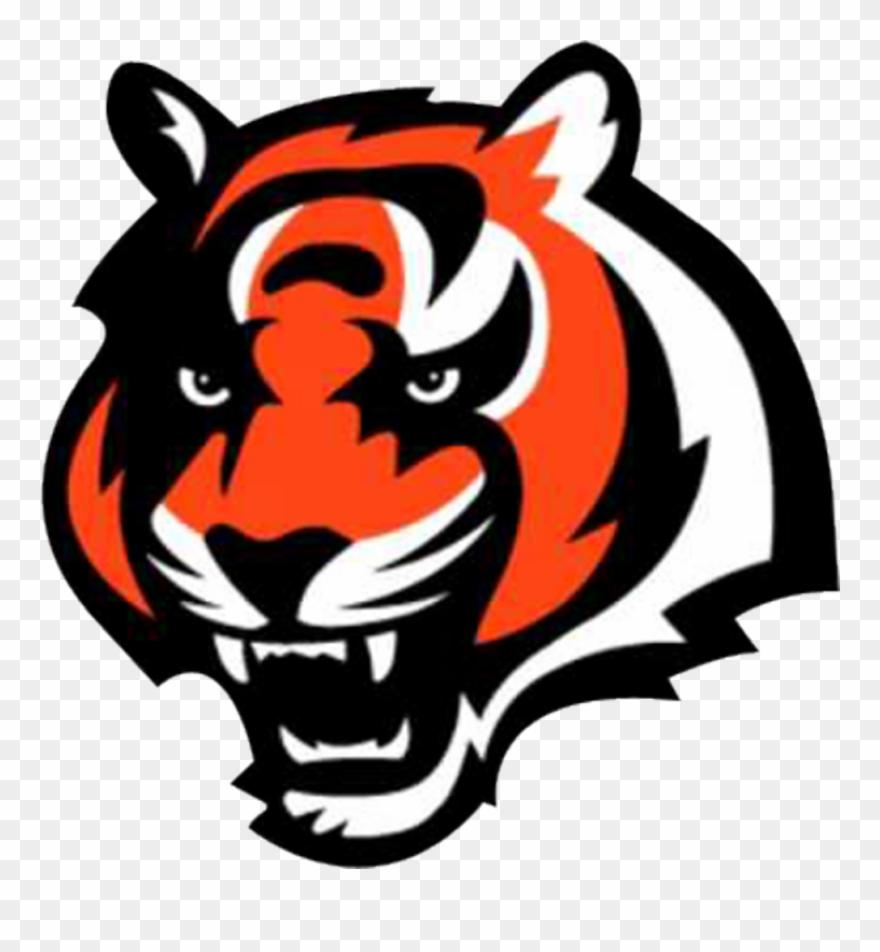 Cincinnati Bengals Tiger Logo Clipart (#1525359).