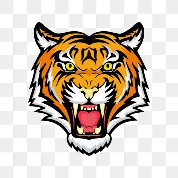 Tiger PNG Images.