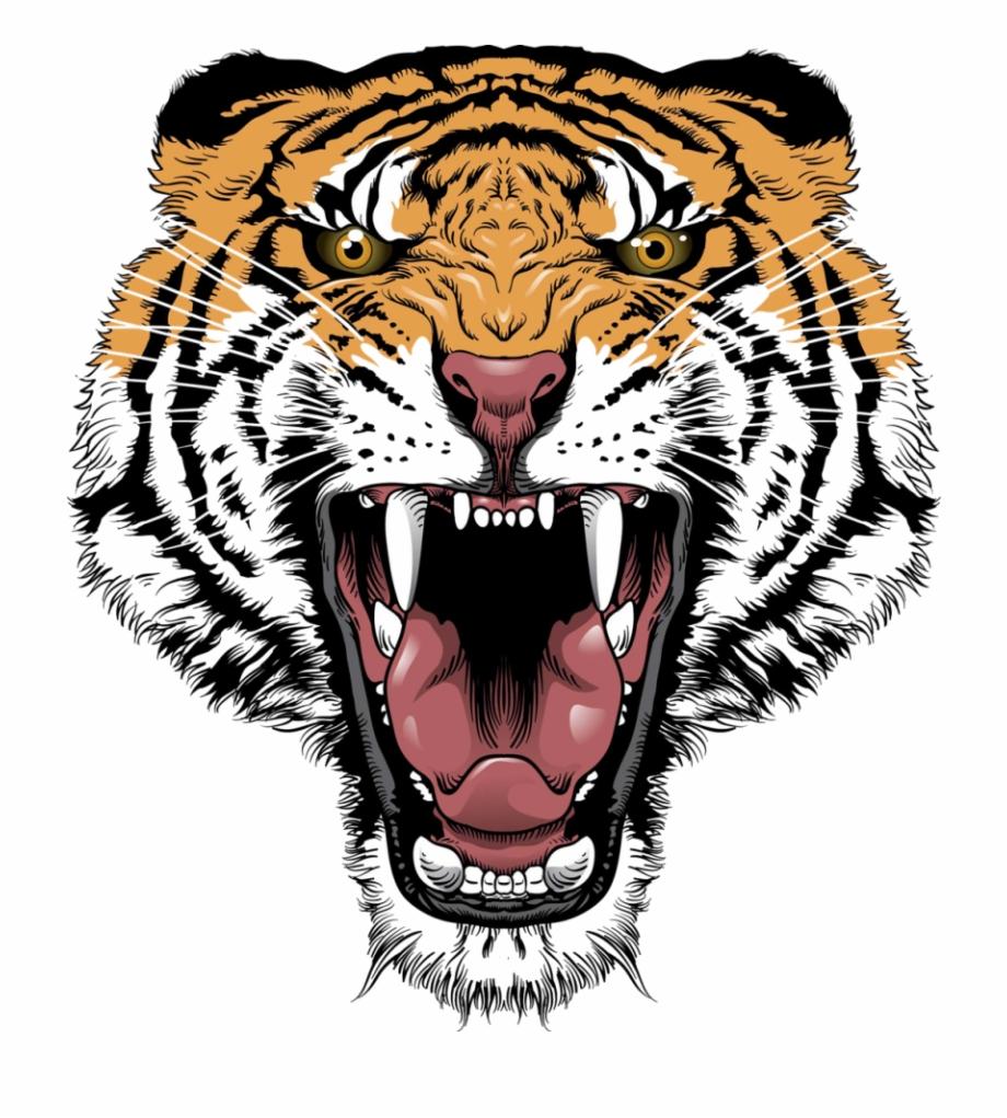 Download Tiger Face Transparent Png 406.