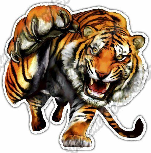 Tiger Prowl Wildlife Fangs Claw Animal Car Bumper Vinyl Sticker Decal 4.6\